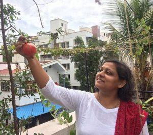 घरीच द्राक्षे स्ट्राबेरी सारख्या फळांची लागवड