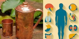 तांब्याच्या भांड्यातील पाणी पिण्याचे फायदे Benefits of drinking Copper water
